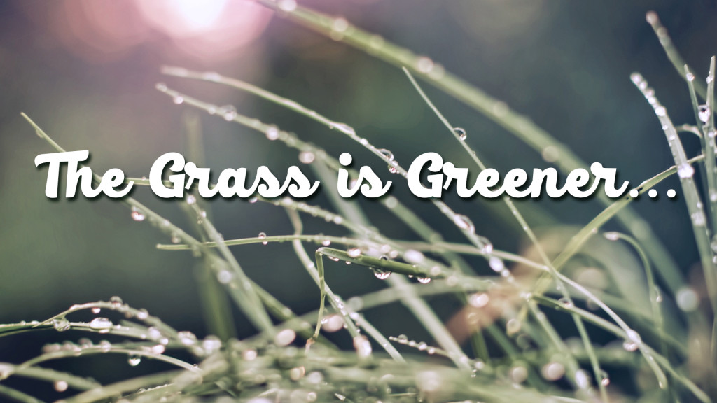 The Grass is Greener 1